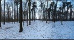 Dairy Bush GigaPan - 177 – January 23 2013
