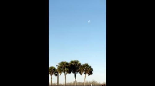 The Moon over Paynes Prairie, FL (2013)