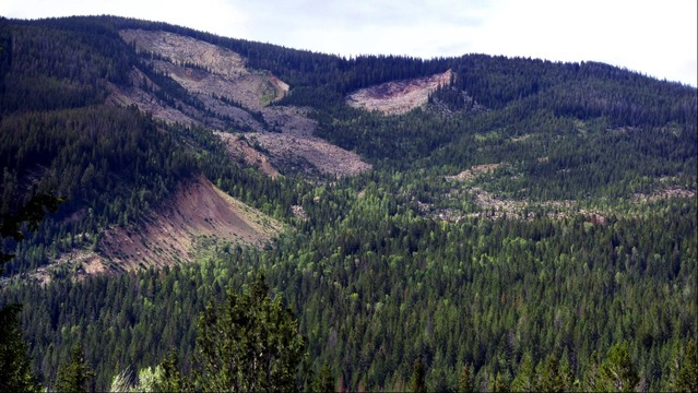 Gros Ventre Rock Slide near Jackson Wyoming