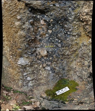 """Breccia Wall,"" Antietam Formation, SE Boyce quadrangle, Virginia"