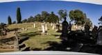 And again from Queanbeyan Graveyard