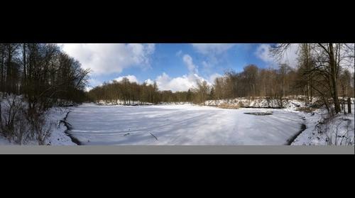 """Goose leg pond"" (Ganzepootvijver) in winter"