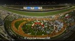 Dubai World Cup 2013 | Animal Kingdom