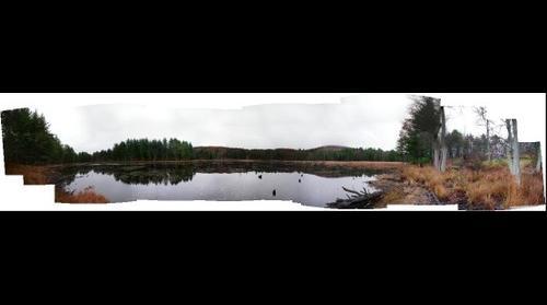 Parsons Pond