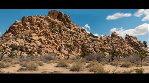 JTNP Rocks