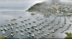Avalon Harbor_View South_Catalina Island, California _ G3-153_263x751