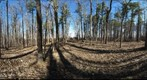 Dairy Bush GigaPan - 189  April 17 2013