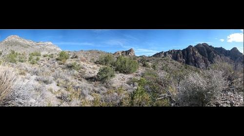 Red Rock Canyon Landscape 02