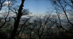 Mount Tsukuba clearing (dark)