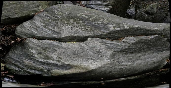 Klingle Valley metaconglomerate, Laurel Formation, Rock Creek Shear Zone, Washington, DC
