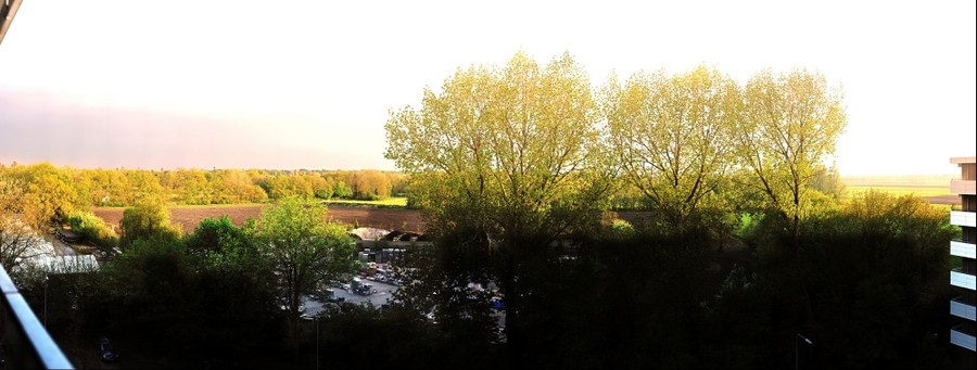 View from home 2
