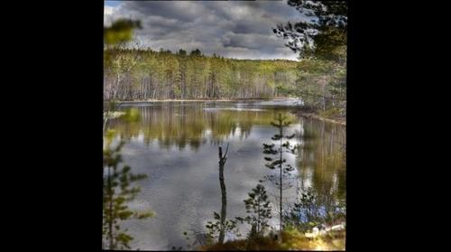 Voxna River Hälsingland Sweden