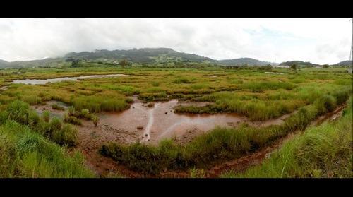 El Cierrón, Ria de Villaviciosa, Asturias