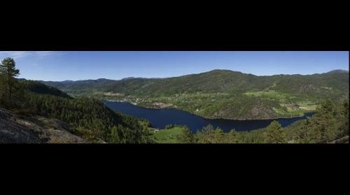 Kviteseid from Striplefjell