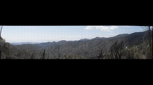 Emory pass looking at the Silver Fire burn area