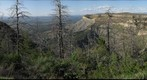 Mesa rim forest and valley view
