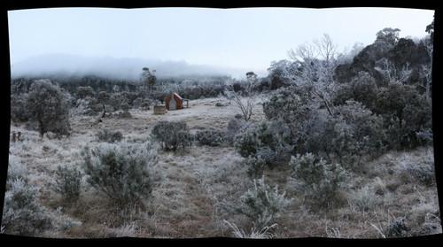 frosty delaneys