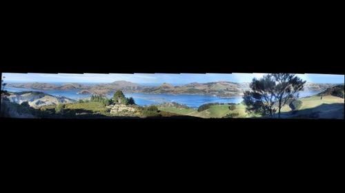 Otago Peninsula Panorama