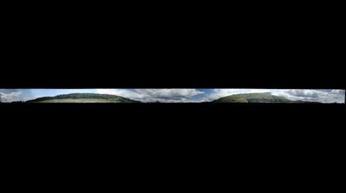Merk Forest