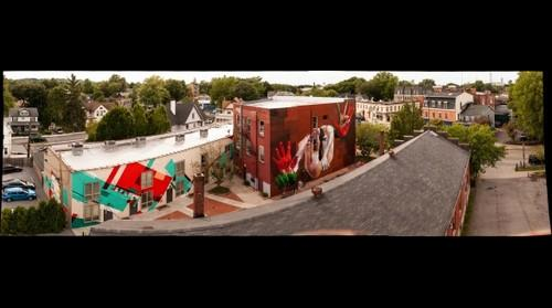 CASE, BILE, ST MONCI,  and Justyn Iannucci murals