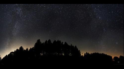 Sternenhimmel in der Lichtung