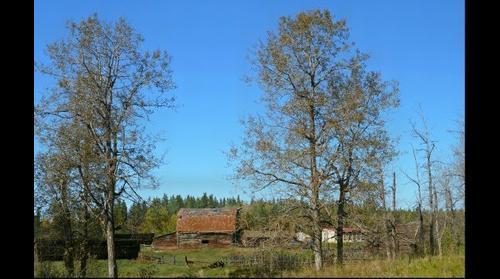 Old barn, Perryvale, Alberta