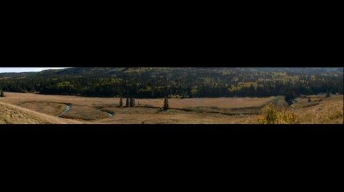 Battle Creek in Cypress Hills Alberta Canada