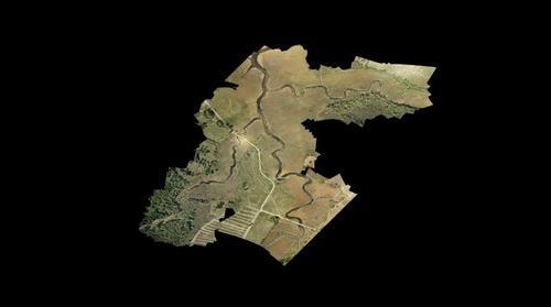 Bevins, Carpenters, Deferno wetland area