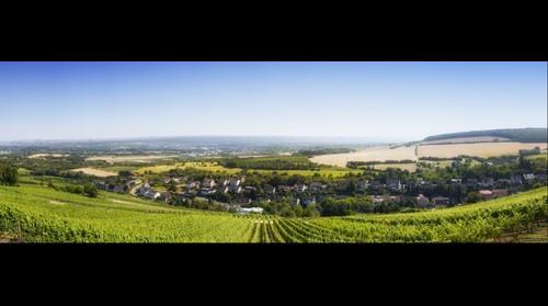 Blick in Richtung Rhein