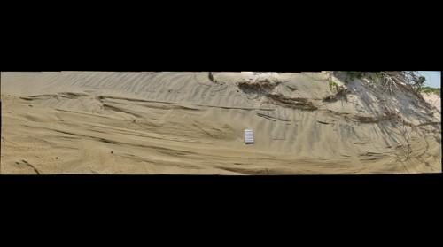 Eroded Sand Dunes, Jockey's Ridge (Nags Head, NC)