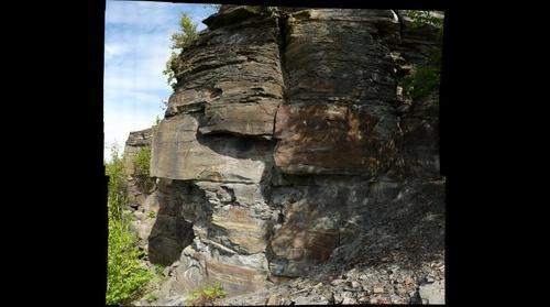 Gilboa Formation, Catskills, New York