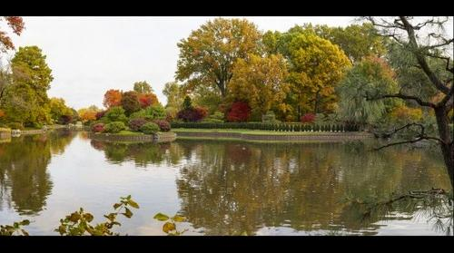 Missouri Botanical in Fall
