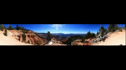 UFDP Bristelcone Pine Overlook