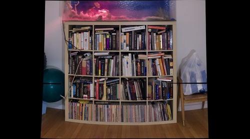 20090104 Books Pano 1