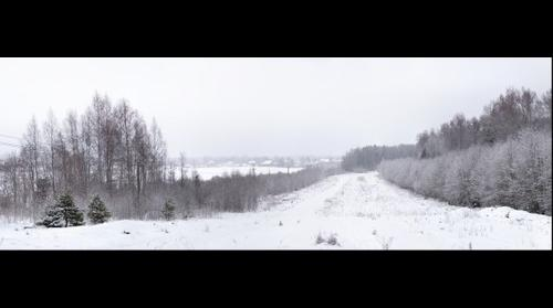 Winter in Leningrad region