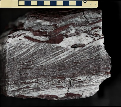 Grinnell Formation Quartzite