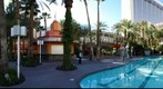 Flamingo las vegas pool