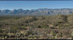 Tucson &amp; Santa Catalina Mountains from Saguaro National Park