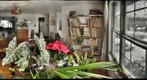 Flowers, Elephant Ear Plant, Lamp, and Snowy Windows