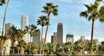 Downtown Los Angeles Thru Palm Trees