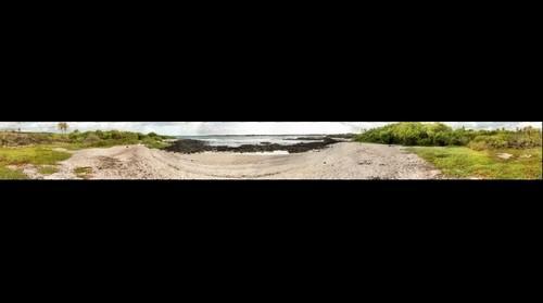 CDRS Director's Beach - 100mm - 2014-02-12