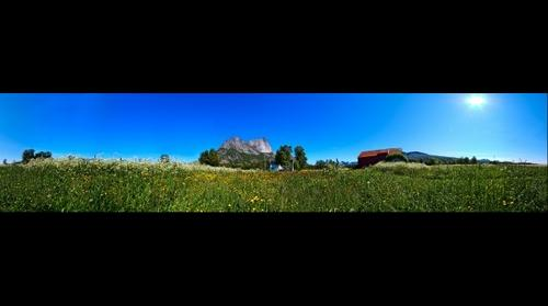 Grasslands - Lofoten, Norway