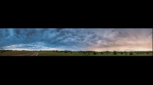 Ürge mező