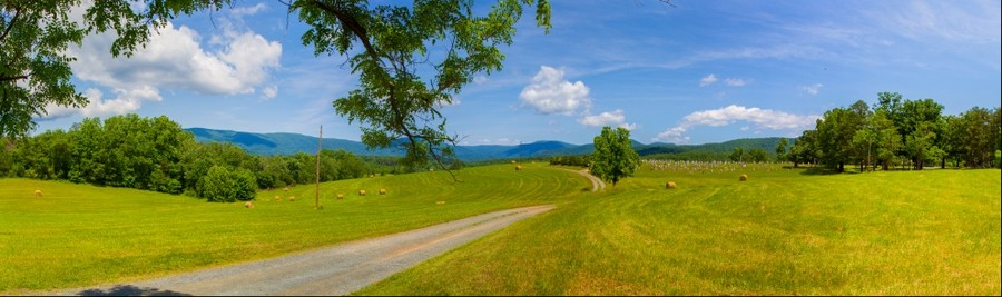 A Farming Hillside Outside Charlottesville, Virginia