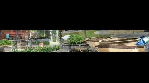 Flower Petal Garden Bed