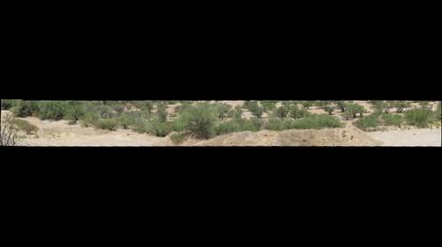 Altar Valley 2