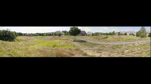 Meadow from Tripod