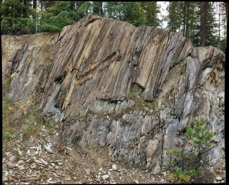 Bedding / cleavage relationships in Chancellor Group slates, Yoho National Park, British Columbia, Canada