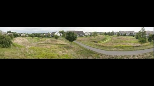 Meadow 7/26/14