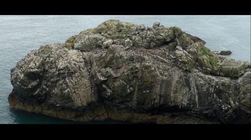 The Amos, Skomer Island